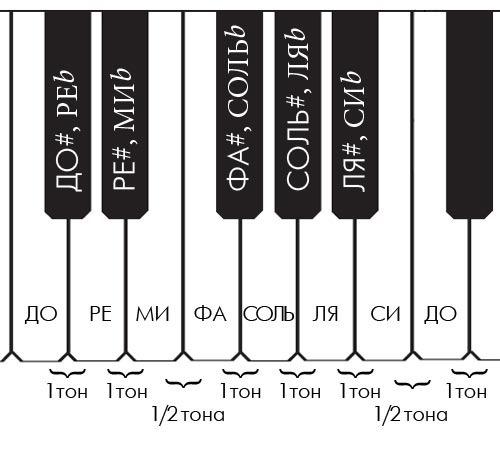Клавиши фортепиано рисунок