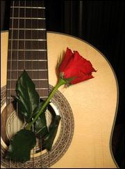 роза_rose